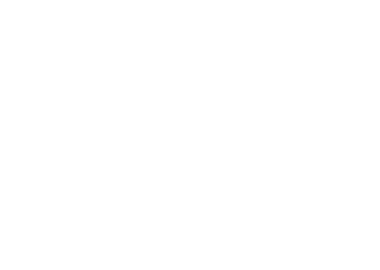 Netprocreative Logo